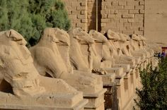 Alison and Peter of Eat Well, Pack Light, Travel Often​ take us on a balloon ride, and showcase #Luxor's famous avenue of sphinxes.    http://lublink.org/portfolio/egypt/ #EgyptianSidekick #EgyptTourism #EgyptTour #EgyptTravel #Sphinx #LuxorTemple #Ramses #UppperEgypt #Karnak #Nile