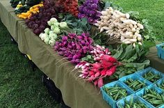 Even Though the Weather has Turned Cold, Downingtown Farmers Market Will Still Be Offering the Very Best Produce. Discover Farm-Fresh Finds at Downingtown Farmers Market This Winter  #local #market #farm #farmers #produce #fruit #veggies #health #idea #healthy #season