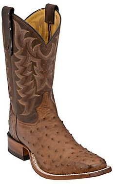 ba05ecbea80 52 Best Ostrich Boots images in 2018 | Cowboy boot, Brown boots for ...