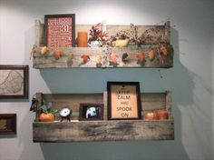 pallet-shelves-simple-wall-storage