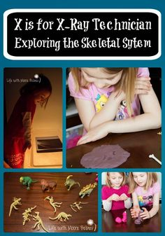 Life with Moore Babies: X is for X-Ray Technician: Learning about Bones Preschool Learning Activities, Hands On Activities, Teaching Kids, Skeletal System Activities, Community Helpers, Hands On Learning, Anatomy And Physiology, Science For Kids, Pre School