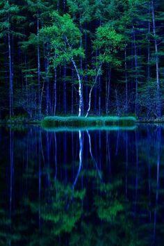 Mishaka Pond, Nagano, Japan 御射鹿池 by Hercio Dias