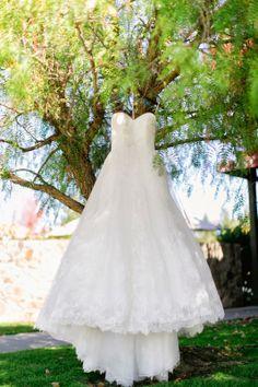 Pronovias Pergola Dress