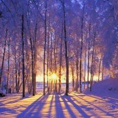 Sunset in Winter.  I might have to try and duplicate this in a card...but after the holidays!