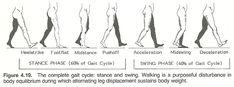 http://www.chiro.org/ACAPress/Body_Alignment.html