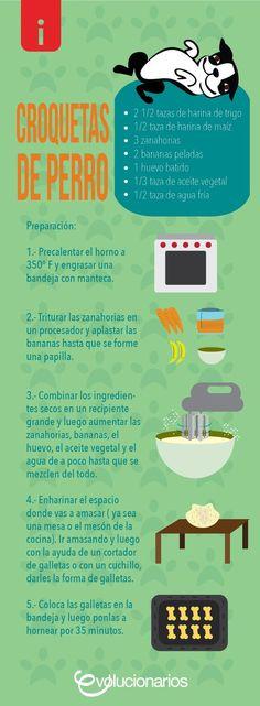 Croquetas de #zanahoria y #plátano para #perros  #Receta fácil para dar un capricho sano a tu amigo perruno
