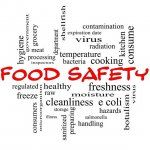 Thanksgiving Food Safety and Food Help