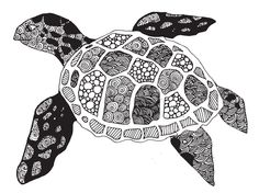 Zentangle designed Turtle