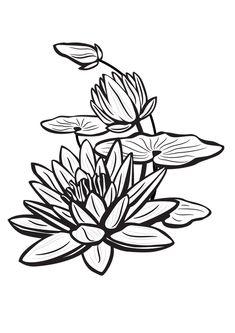 fleur de lotus - Recherche Google