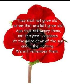 Remembrance day remembrance day poem to use as a discussion poppy prayer mightylinksfo