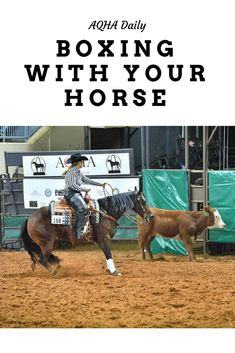 What exactly does it mean to box with your horse? Horse Training Tips, Horse Tips, Equestrian Outfits, Equestrian Style, Equestrian Fashion, Horse Exercises, Horse Riding Clothes, Natural Horsemanship, English Riding