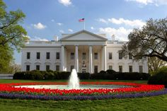 Explore The White House On A Dollar Bill With AR App 1600