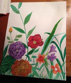 Illustration for Artisanal Botanist Conteste from FRS by Gabriela Fuente, via Behance