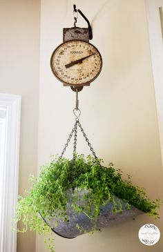 Decorating with vintage scales - R&R