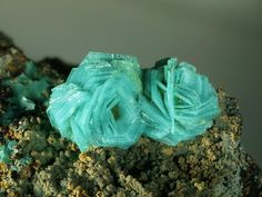 Chalcophyllite. Salsigne Mine, Salsigne, Languedoc-Roussilon, France FOV=3.3 mm Photo Enrico Bonacina