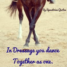 """when people ask me what dressage is.... I tell them, """"it's a dance on horses."""" :')"""