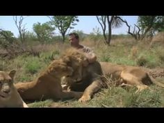 Lions On The Move - Kevin Richardson (1/2)