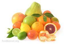 Zitrusfrüchte: Orange, Blutorange, Mandarine, Klementine, Zitrone, Limone, Pomela, Grapefruit