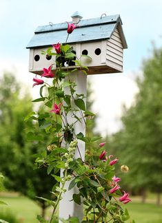 Birdhouse and flowering vine... think it's a clematis??!!