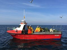 Managing Spain's small-scale fisheries with limited data? ¡Sí se puede