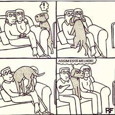 AQUI É ASSIM! hehe #cachorro  #amocachorro  #gato  #amogatos  #gatofofo  #cachorroétudodebom  #amoanimais  #filhode4patas  #petmeupet