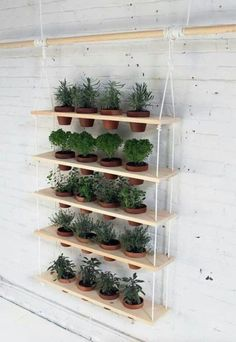 40 Great Vertical Gardens Anyone Can Grow