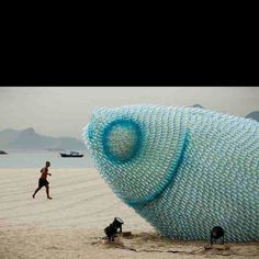 Giant fish sculpture made out of discarded plastic bottles for the Rio+20 conference.