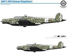 Cant Z.1007 Alcione Ww2 Aircraft, Military Aircraft, Heroes And Generals, Italian Air Force, Military Equipment, Luftwaffe, World War Two, Military Vehicles, Wwii