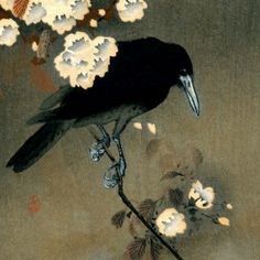 Vintage Japanese Crow And Blossom Woodblock Print Wooden Wall Art by Pdpress - X Custom Posters, Vintage Posters, Ohara Koson, Poster Prints, Art Prints, Wooden Wall Art, Wood Wall, Woodblock Print, Vintage Japanese