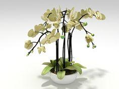 N/A Orchid 3d model |  Designconnected Studio