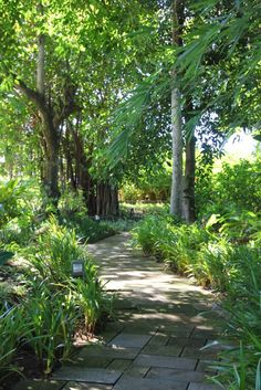 Four Seasons Anahita ‏ @FSMauritius  Explore the Resort's tropical garden pathways, lined with beautiful GREEN foliage #FriFotos pic.twitter.com/RW0GMuAL
