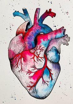 My Candy Heart, art numérique aquarelle, art téléchargeable Painting Inspiration, Art Inspo, Anatomical Heart Drawing, Human Anatomy Art, Heart Anatomy Drawing, Biology Art, Watercolor Heart, Art Watercolour, Medical Art