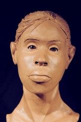 NamUs UP # Found March in a wooded area, 17725 Falls Road, Baltimore, Maryland Forensic Facial Reconstruction, Do You Know Me, Forensic Science, Missing Persons, Baltimore Maryland, Forensics, March, Female, Mac
