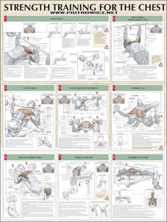 Strength Training For The Chest - Fitness Healthy Exercise Gym - Yeah We Train !