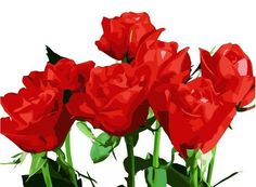 paint by numbers roses - Google Search