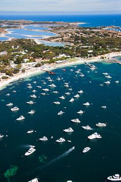 Boating, camping, bike riding, snorkelling, diving, kayaking, swimming, beach-going, reading, climbing, exploring, eating, drinking. Everything of the best on Rottnest Island.