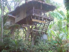 Treehouse resort, Koh lanta, Thailand.