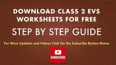 Class 2 EVS Worksheets Class 1 English, Practice English Grammar, English Grammar Worksheets, Worksheets For Class 1, Model Question Paper, Human Body Organs, Revision Notes, Sample Paper, Class 8