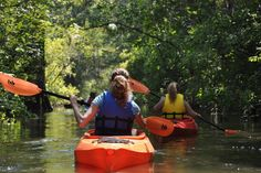 Black River Outdoors Kayak Tours - Guided Kayak Tours, Kayak Fishing Trips, Kayak and Canoe Sales and Rentals in South Carolina, catering to Myrtle Beach, Pawleys Island, Murrells Inlet, Debordieu, Surfside, Georgetown, Conway and Charleston
