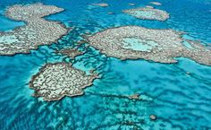 Australia said today it will ban the dumping of dredging waste on most of the Great Barrier Reef in a move welcomed by environmentalists as a first step towards a total halt.