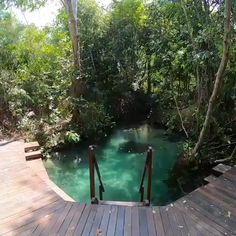 Swimming Pool Designs, Swimming Pools, Natural Swimming Ponds, Natural Backyard Pools, Natural Pools, Provence Garden, Pool Water Features, Dream Pools, Beautiful Places To Travel
