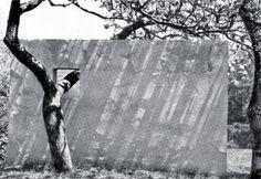 """eltallerdelapatatafrita:  Bernard Rudofsky.""""Tapia y manzano en el jardín de Nivola"""". Amagansett, Nueva York. 1949-50"""