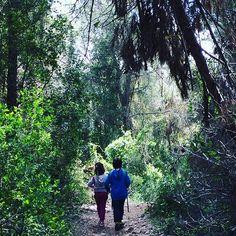 Hemos descubierto el Pas del Llop. #Alzira.  @geocaching en familia #Geocaching con #niños. @joanvi_talens