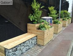 timber planters with gabion supported seats http://www.gabion1.co.uk