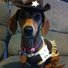 My little cowgirl! It's hard to imagine loving someone so much!