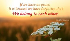 If we have no peace we have forgotten we belong to each other