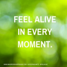 Feel alive in every moment.