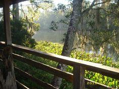 Wakulla River, FL