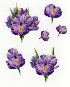 3d fleurs - Page 2