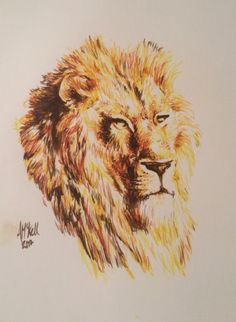 Lion water colours Original artwork by Alex Mckell